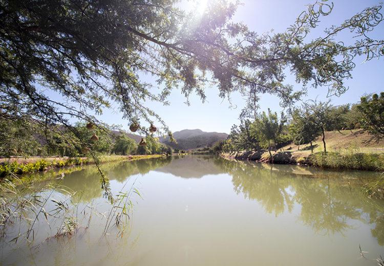 Oppi Dam