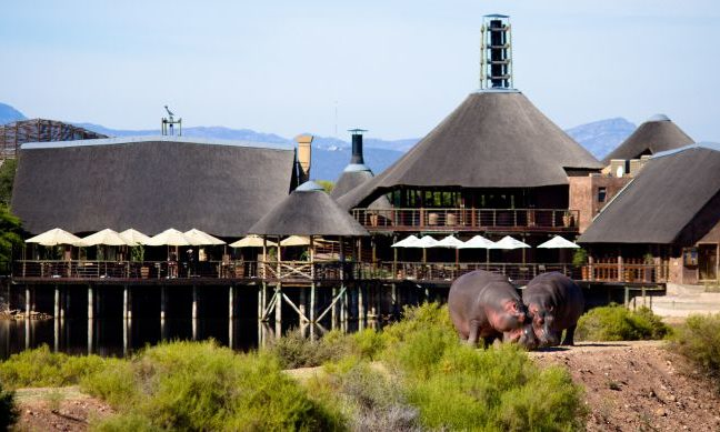 Buffelsdrift Game Lodge