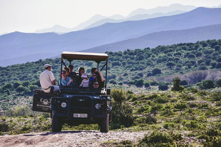 Buffelsdrift Game Lodge Bush Safari