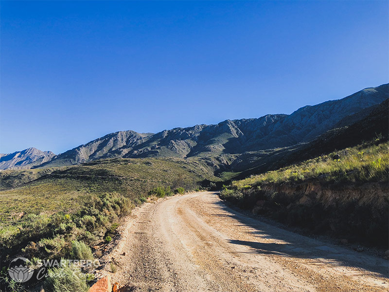 Oudtshoorn Side of the Pass